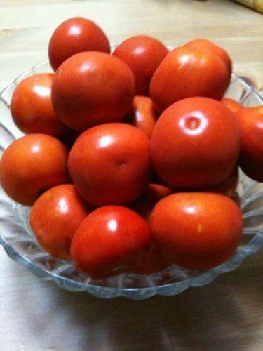 手作りトマトを使ったビーフシチュー?
