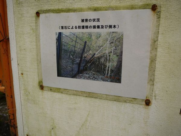 鳩ノ巣渓谷は通行止めだった